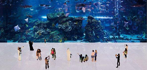 Aquarium Dubai Mall, 2012, ©Tor Seidel